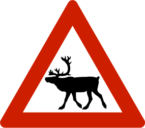 Traffic sign of Norway: Warning for reindeer on the road