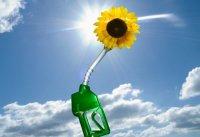 Экологически чистое топливо не по нраву немцам